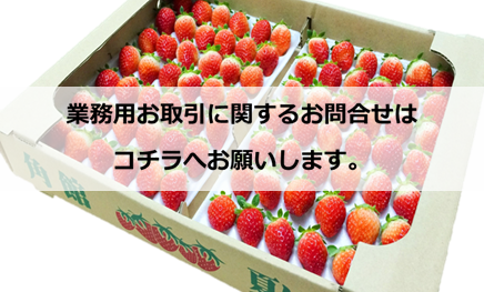 夏イチゴ業務用販売